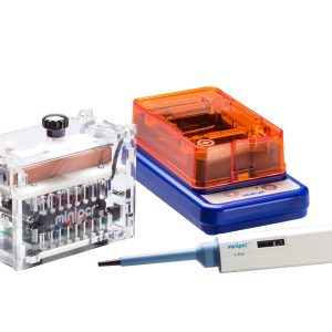 PCR and Gel Electrophoresis Bundles